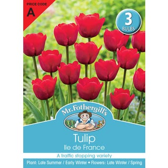 Mr Fothergill's Bulbs Tulip lle de France 3 Bulbs