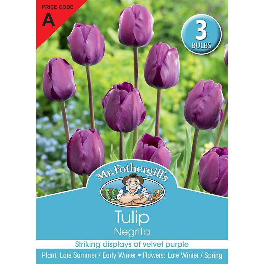 Mr Fothergill's Bulbs Tulip Negrita 3 Bulbs