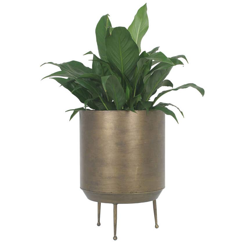 Takasho Cylindrical Planter on Legs Moroccan