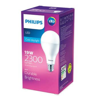 Philips LED Globe 19W ES Cool Daylight