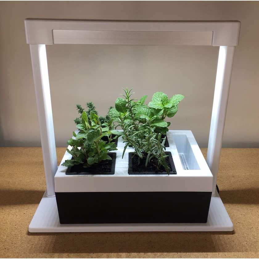 Herb Lamp 4 Pot Self Watering Growing Kit