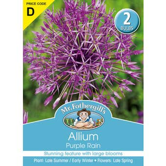 Mr Fothergill's Bulbs Allium Purple Rain