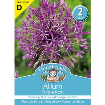 Mr Fothergill's Bulbs Allium Purple Rain