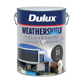 Dulux Weathershield ColourGuard Exterior Low Sheen Monument 10L