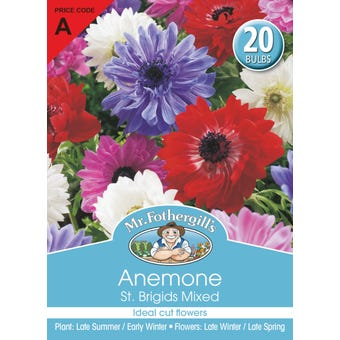 Mr Fothergill's Bulbs Anemone St. Brigids Mix 20 Bulbs