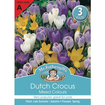 Mr Fothergill's Bulbs Dutch Crocus Mixed 3 Bulbs