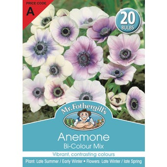 Mr Fothergill's Bulbs Anemone Bi-Colour Mix 20 Bulbs