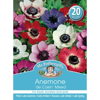 Mr Fothergill's Bulbs Anemone De Cean Mix 20 Bulbs