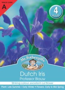 Mr Fothergill's Bulbs Dutch Iris Professor Blauw 4 Bulbs