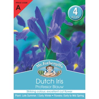 Mr Fothergill's Bulbs Dutch Iris Professor Blauw 4 Bulbs