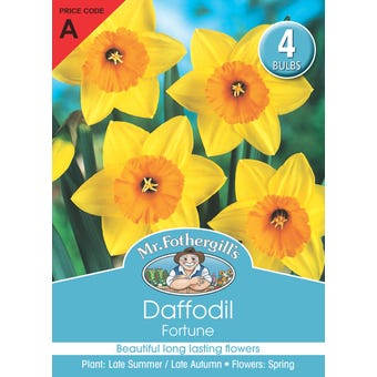 Mr Fothergill's Bulbs Daffodil Fortune 4 Bulbs