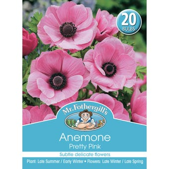 Mr Fothergill's Bulbs Anemone De Cean Pretty Pink 20 Bulbs