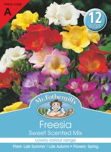 Mr Fothergill's Bulbs Freesia Sweet Scented Mix 12 Bulbs