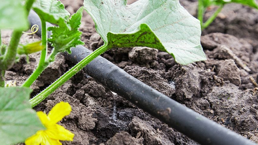 How to install a garden watering system