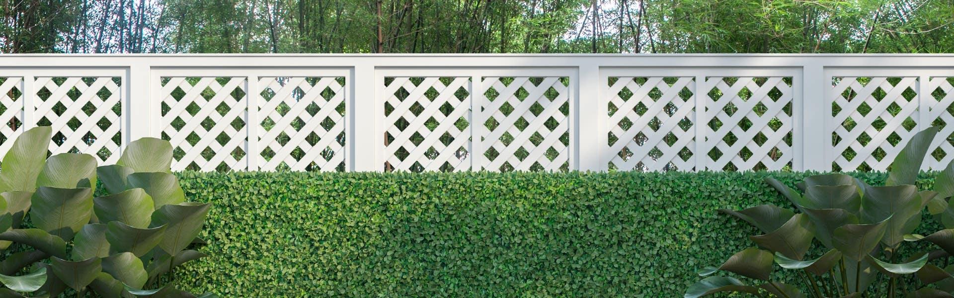 backyard garden with lattice fence