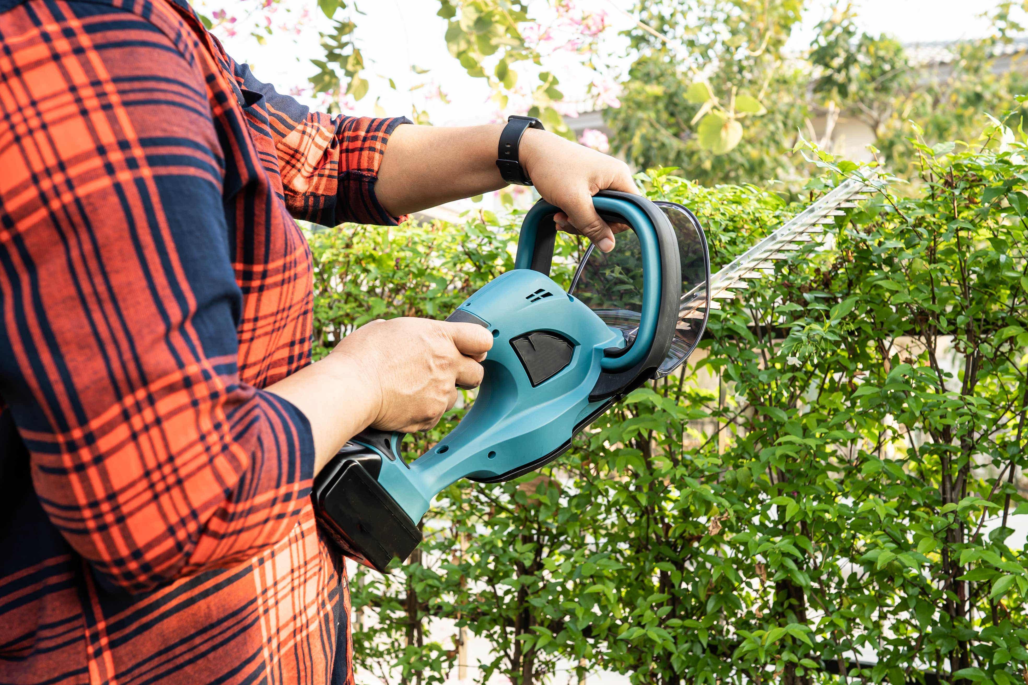 Gardener using electric hedge trimmer