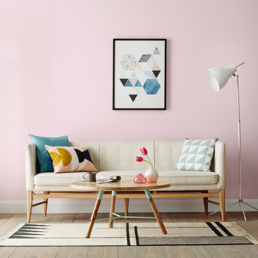 Accent Interior Paint